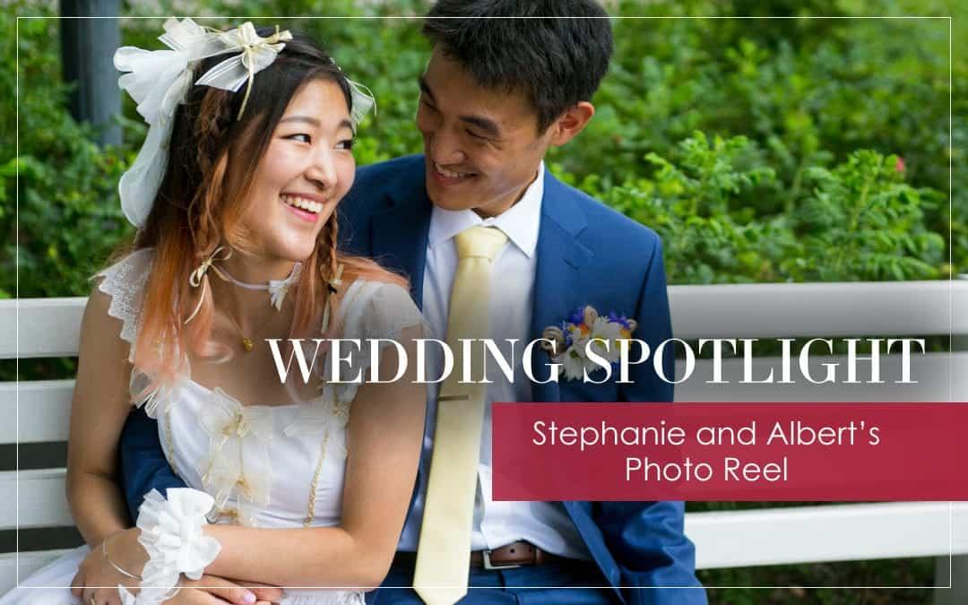 Stephanie and Albert's Photo Reel: Wedding Spotlight